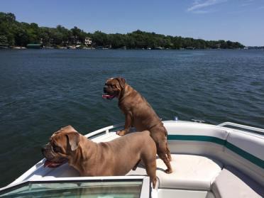Gertie & George