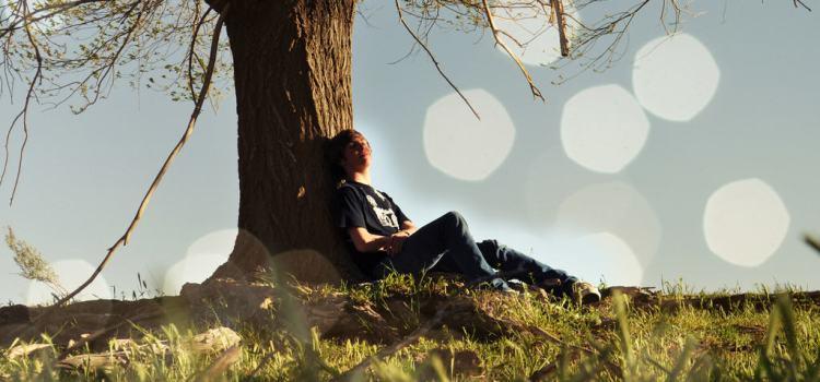 Open Awareness, Creativity, & Daydreaming