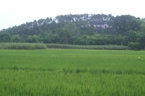 Field and mansion near Tu Duc's tomb
