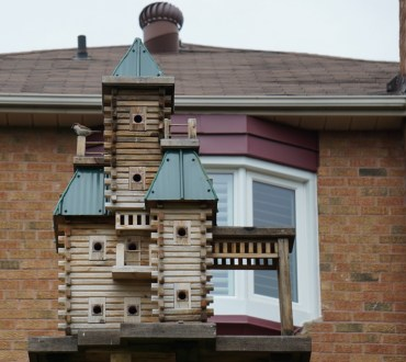 Impressive, local community housing; hoping for purple martins?