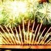なにわ淀川花火大会2019何時まで花火は見れる|花火見物の穴場はどこ?