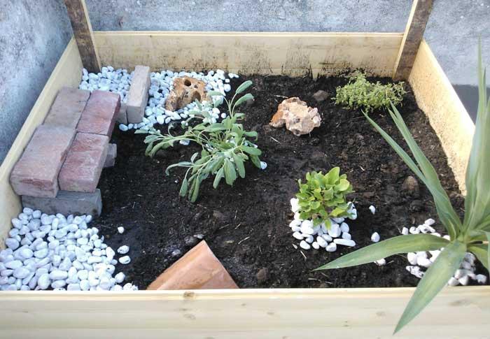 Terrario per tartarughe terrestri  Modelli in vetro e in legno a confronto  MigliorProdotto
