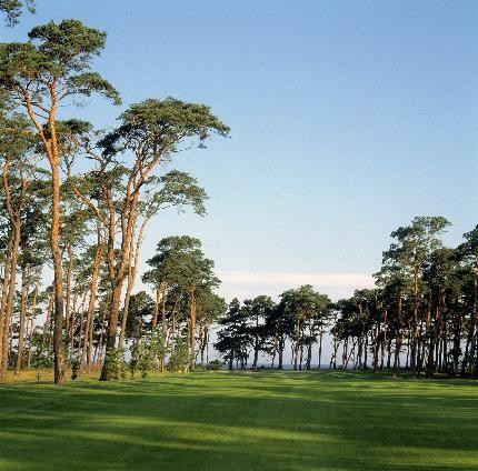 BARSEBACK: A beauty on the verge of the sea. The Migrant Golfer's favorite any time. Here hole 17. Photo: Promotion Skåne