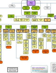 Organisation chart for the european external action service also rh migrantsatsea