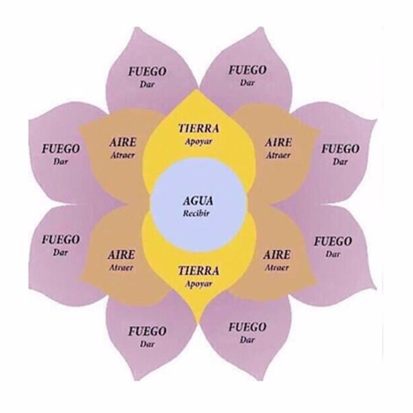 La Flor De Los Engaños