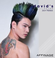 2014 hair trends david salon