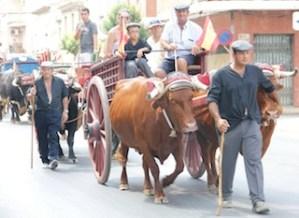 feria-almoradi-desfile-carros