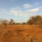 parque-nacional-amboseli