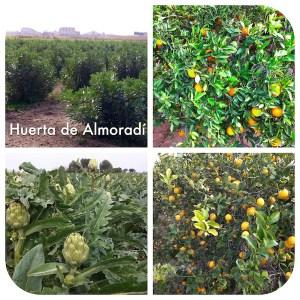 Huerta de Almoradí