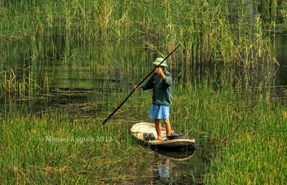 Van Long (Vietnam nord)