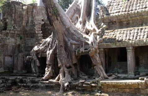 Angkor Preh Kham