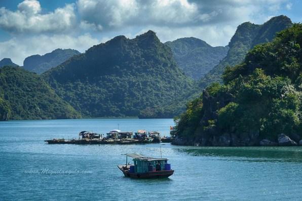 Ile de Cat Ba, dans la Baie d'Halong