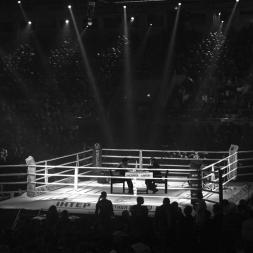 15 Fight