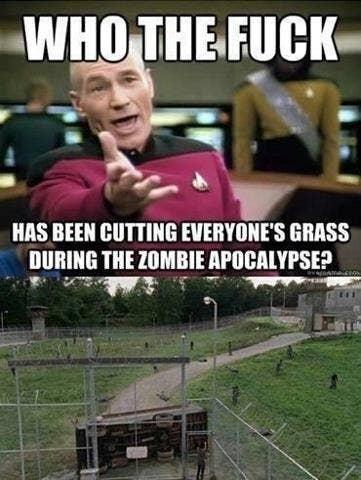Meme: ¿Quién ha cortado el césped de todo el mundo durante un Apocalipsis zombie? (Viendo The Walking Dead)