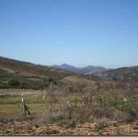 Ruta de Robledollano a Roturas. Despoblado de Torrejón. Senderismo en Villuercas Ibores Jara