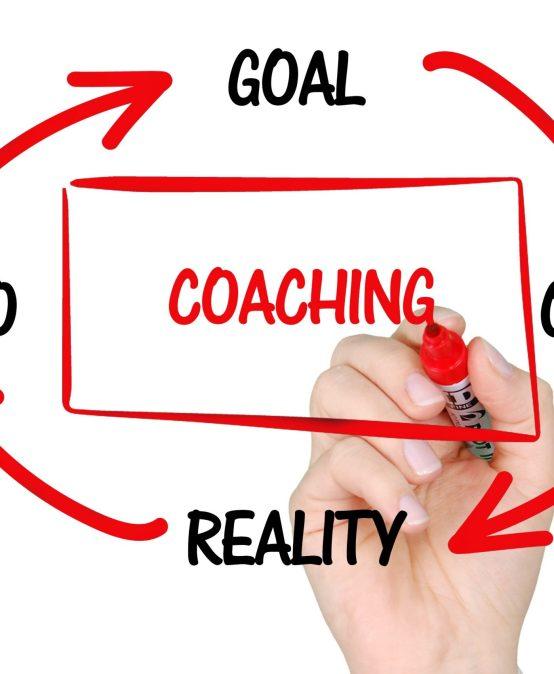 Dezvoltă antreprenorul si nu businessul Coaching sistemic și Constelații Organizaționale