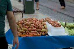 22-antalya-fructe-de-cactus-comestibile