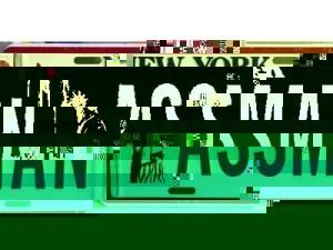 mihai_vasilescu_numar_auto