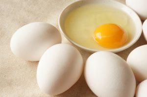 卵,妊娠しやすい,栄養,タンパク質,アミノ酸