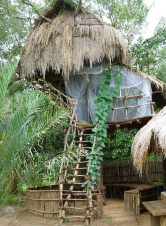 A-tree-hut-experience-The-Allure-of-Nature3