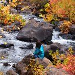 【シャスタ】自然に溶けていく! マクラウドの滝 (その1)
