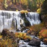 【聖地シャスタ 秋のおすすめ】紅葉の時期のマクラウドの滝で(その2)