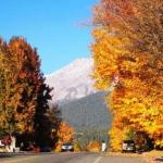 【聖地シャスタ秋のおすすめ】キャッスルレイクとハートレイクの紅葉風景