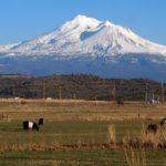 【シャスタおすすめ】シャスタ山の穏やかな風景-シャスタドライブコース・シャスタ山写真スポット