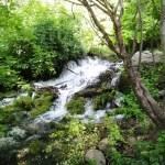 水のパワースポット!シャスタとルルド!聖なる水の聖地へ旅していた?!
