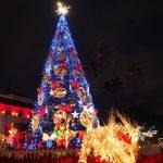 ハワイのクリスマスの過ごし方!7つの楽しみ方!イルミネーション!クリスマスディナー!
