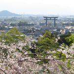 高野山の桜!大神神社のお花見!パワースポットで運気アップ!見頃は?