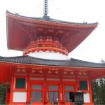 【パワースポット関西】穴場神社と人気の「高野山」は最強の聖地巡り!