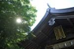 【志賀海神社】宇宙の時間軸で動くと奇跡の旅!エゴを手放す!