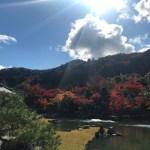 京都の紅葉!見頃!11月下旬「京都紅葉だより」紅葉穴場とおすすめスポット