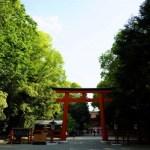 【募集】京都リトリート2020年7月・8月「賀茂川ヒーリング&神社巡り」