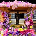 花まつり!4/8はお釈迦様が生まれた日!仁和寺に行ってきたよ~!