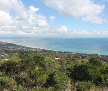 A Day with Surf and Fitness Journey: Mornington Peninsula