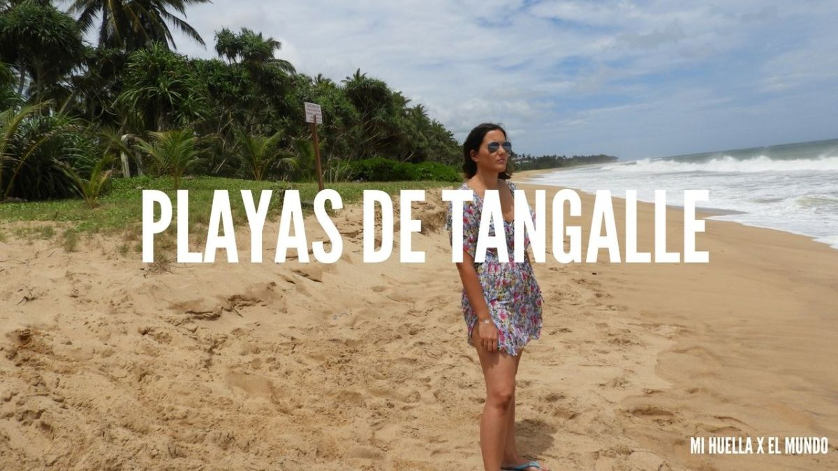 PLAYAS DE TANGALLE – DESOVE DE LAS TORTUGAS EN REKAWA