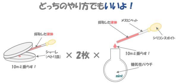 クロストリジウムの検査③