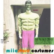 Hulk Costumes HLK001 - miiostore Costumes Singapore