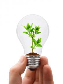 groene lamp mijn onderneming duurzaam
