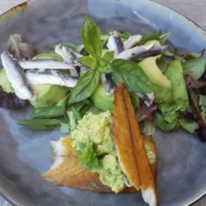 makreel | ansjovis | avocado | basilicium
