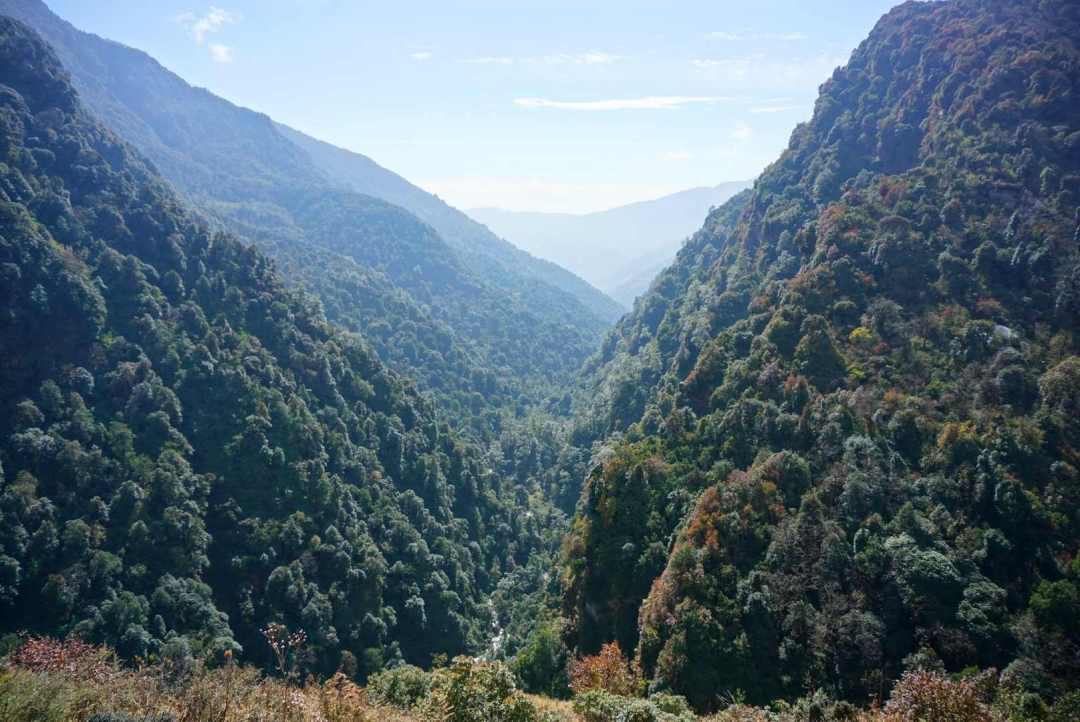 Dal Poon hill trekking
