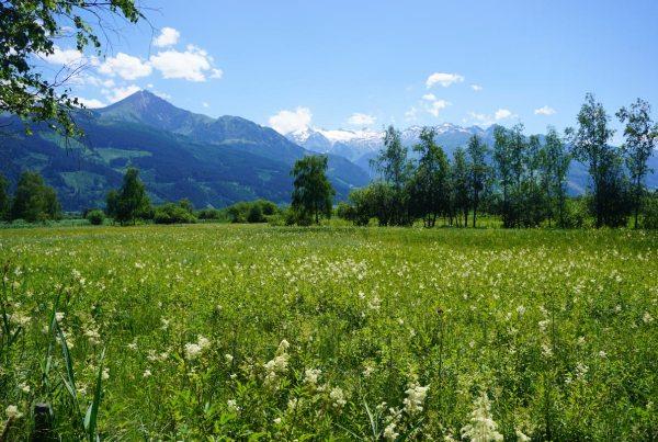 Tirol-Oostenrijk-Roadtrip Austria