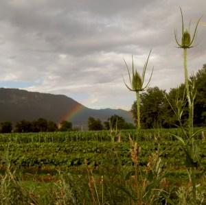 weer in Slovenië: regen of zon op vakantie; bron Mijn Slovenië