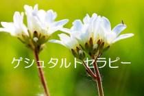 二輪の白い花