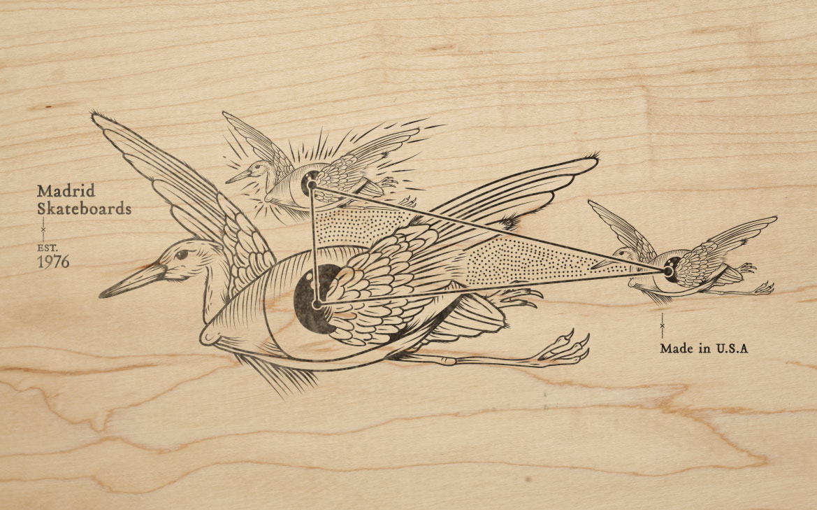 birds_flight_madrid