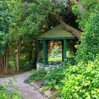 5 miejsc w hrabstwie Wicklow idealnych na spacer