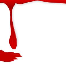 Kristuksen veri