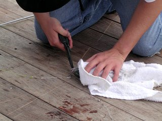 removing the fish hook